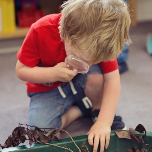 Sedbergh Nursery School - Mulberry Bush